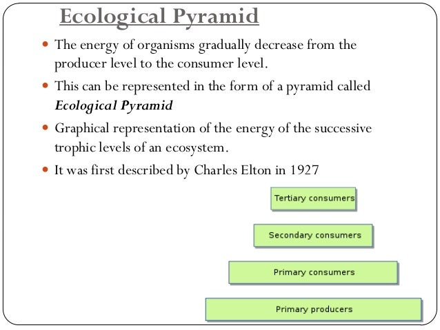 Types of Ecosystem  Natural  1.Terrestrial ecosystems (grasslands, forests, desert ecosystems)  2.Aquatic ecosystem  a.Le...