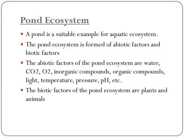 Lake Ecosystem  A lake is a large fresh water body of water which has no connection with the sea.  It is a standing wate...
