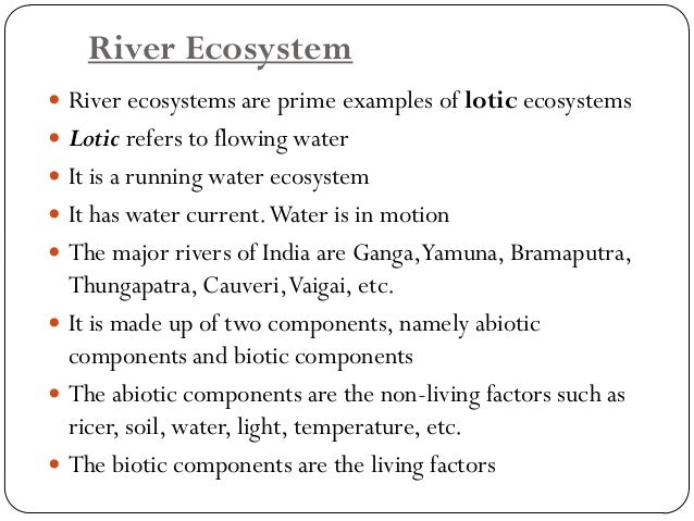 Marine Ecosystem  Marine ecosystem comprises the ocean and sea  Marine ecosystemsare among the largest of Earth'saquatic...