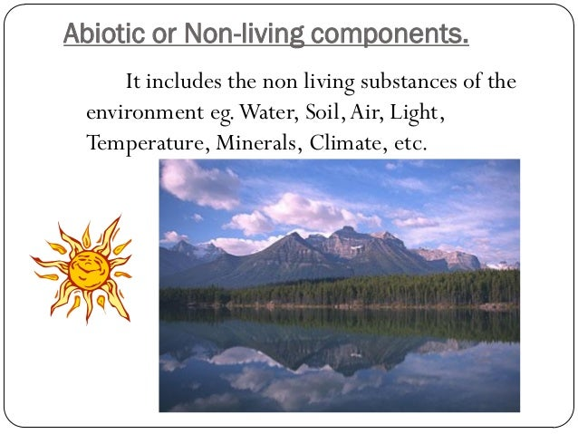 Biotic or Living components   The biotic factors include the living organisms of  the environment. Eg. Plants, Animals, B...