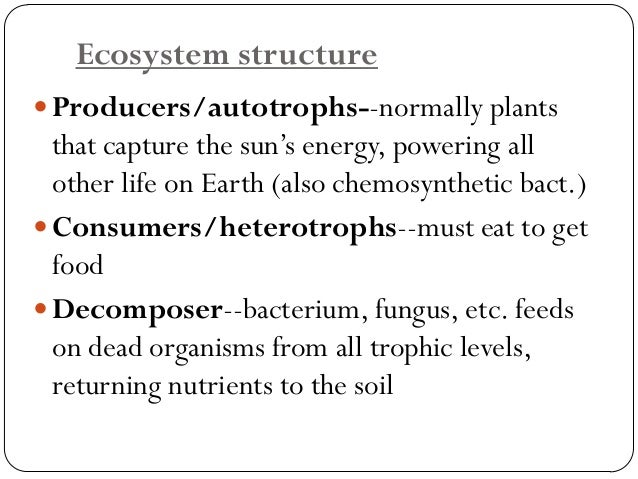 Producers/Autotrophs  The organisms which carry out photosynthesis constitute the Producers of an ecosystem. Eg. Plants, ...