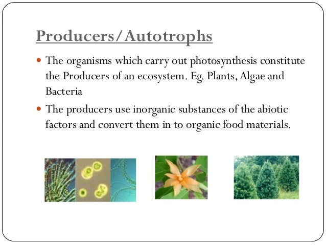 Consumers or Heterotrophs  Consumers are organisms whish eat other organisms. All animals are consumers.  They are furth...