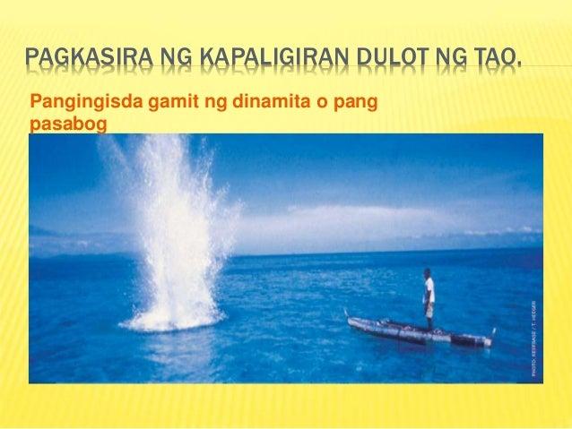 kaingin epekto sa kaliasan May masamang epekto sa mga urban  kadalasang natatagpuan sa buhahag na lupa o mga materyal na mabato kaingin isang paraan.