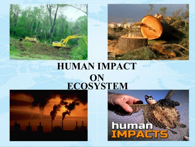 the effects of human activities on the planet earths environments As the world's population continues to there is serious danger of a permanent change to the global environment human activities have led to the pollution of.
