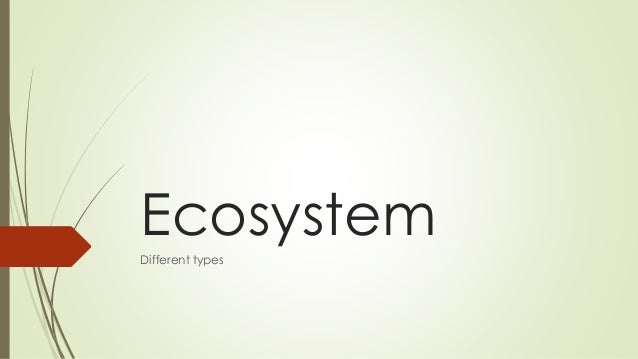Ecosystem Different types