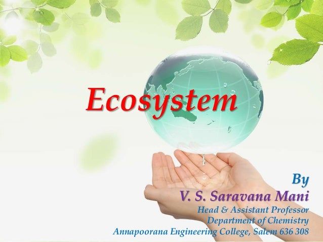 Ecosystem By V. S. Saravana Mani Head & Assistant Professor Department of Chemistry Annapoorana Engineering College, Salem...