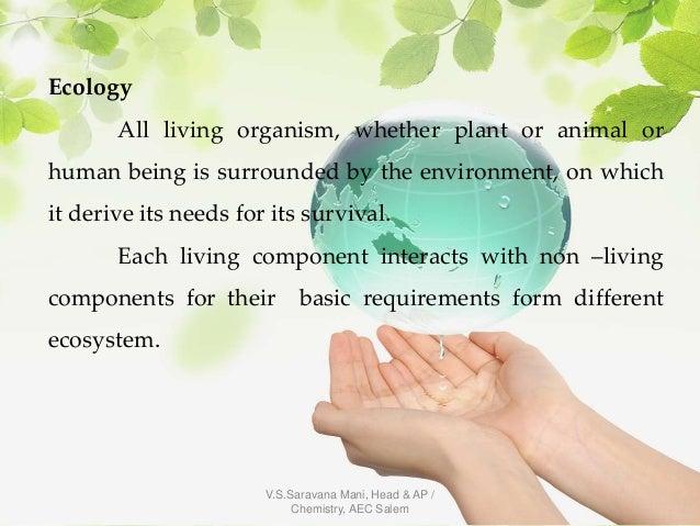 Ecosystem Slide 2