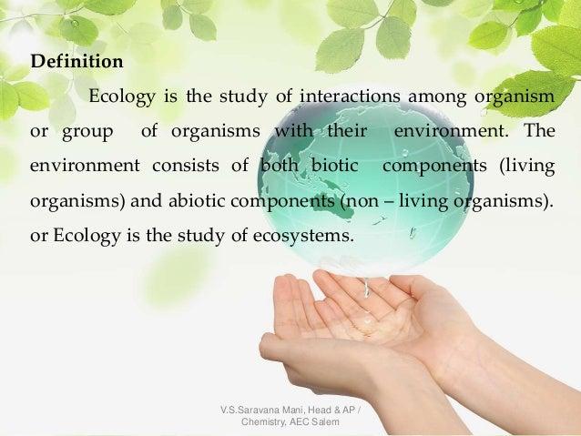 Ecosystem Slide 3