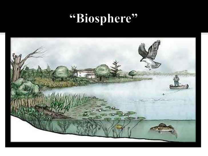 """""""Biosphere""""<br />"""