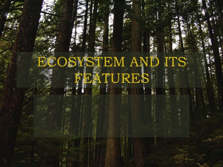 ECOSYSTEM AND ITS    FEATURES