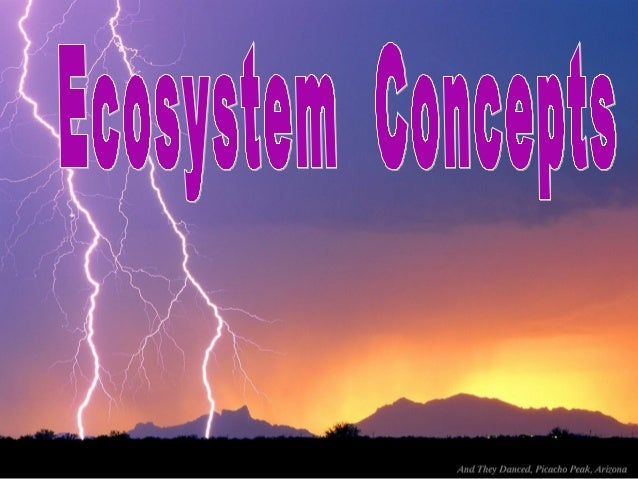 Ecological System Concept (Concept of Ecosystem) Ecosystem is the basic structural andEcosystem is the basic structural an...