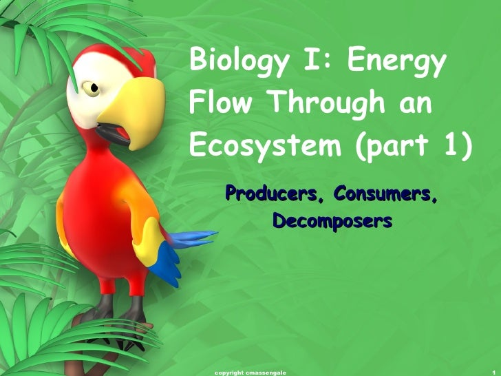 Biology I: Energy Flow Through an Ecosystem (part 1) Producers, Consumers, Decomposers copyright cmassengale