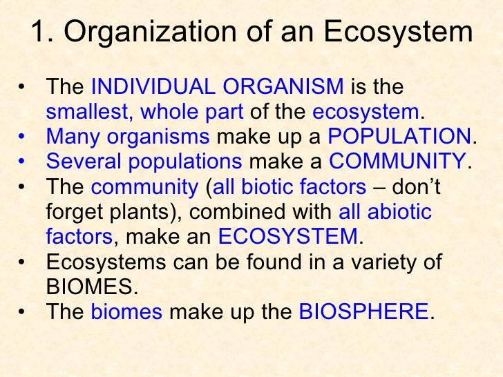 ecosystem and biomes relationship memes