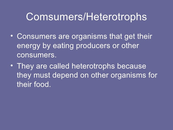 chemosynthesis on other planets Chemosynthesis in a sentence: other autotrophs use inorganic compounds instead of sunlight to make food process known as chemosynthesis attendant planets.
