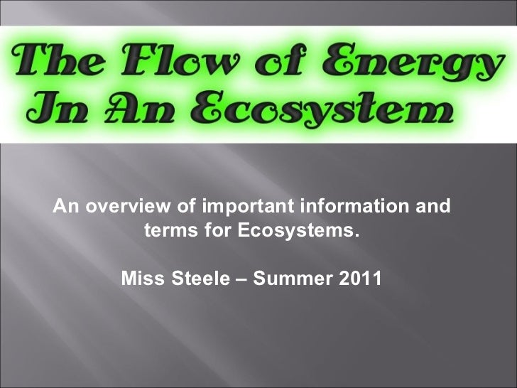 An overview of important information and terms for Ecosystems. Miss Steele – Summer 2011