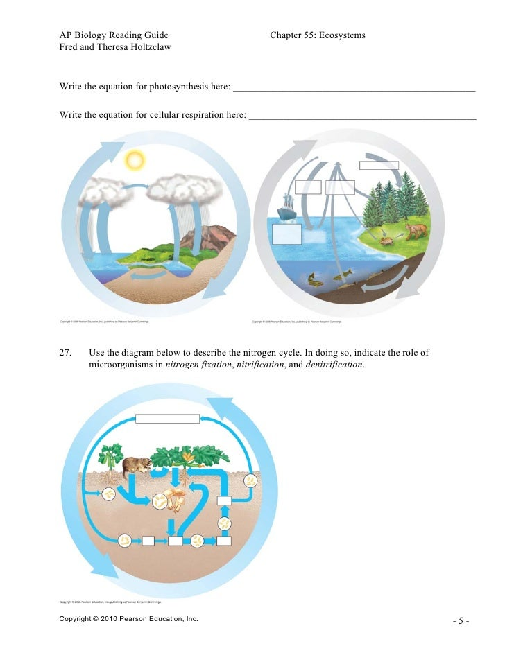 ap biology reading guide chapter 10 photosynthesis Read and download ap bio chapter 10 photosynthesis reading guide answers free ebooks in pdf format - civil service account clerk study guide manual for john deere riding mower.