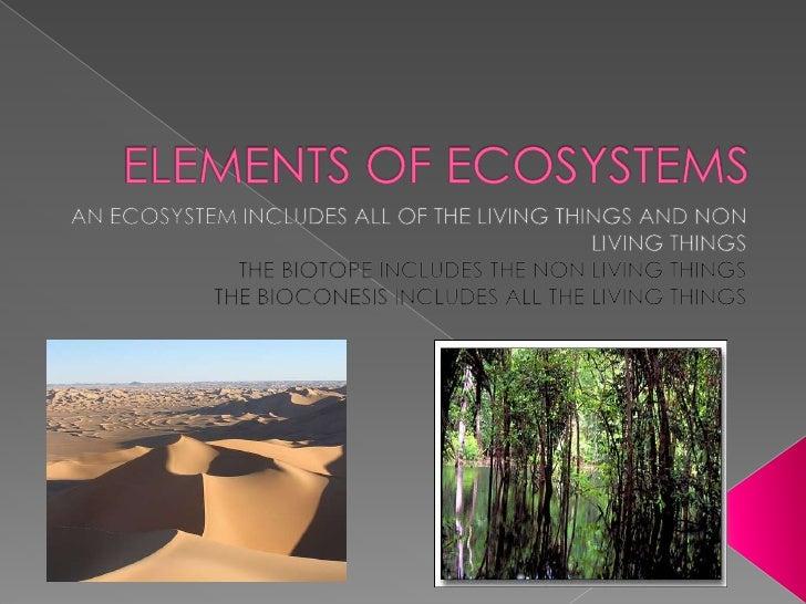 Ecosystems Slide 2