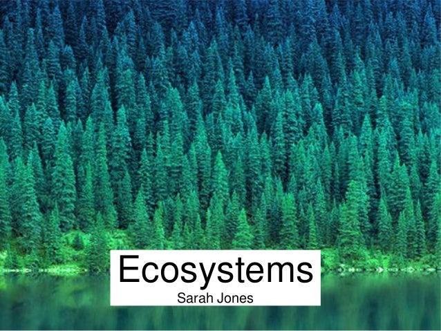 Ecosystems  Sarah Jones