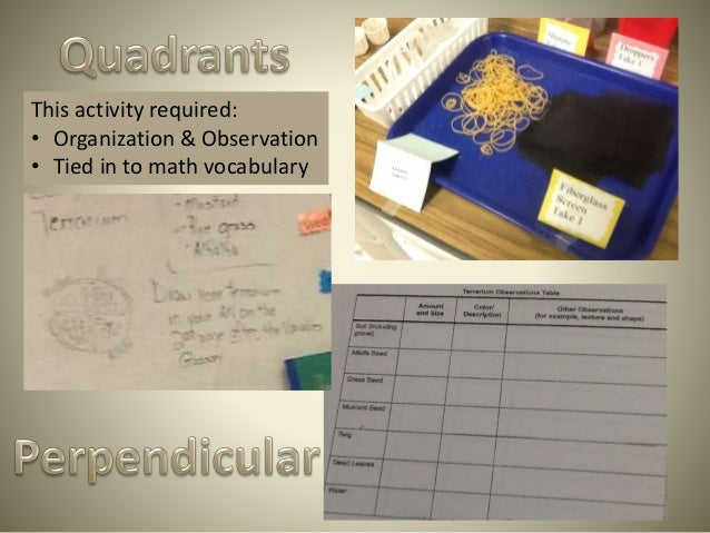 This activity required: • Organization & Observation • Tied in to math vocabulary