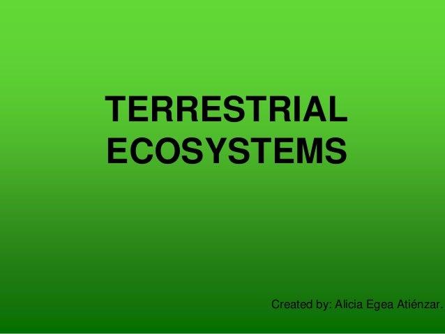 TERRESTRIAL ECOSYSTEMS Created by: Alicia Egea Atiénzar.