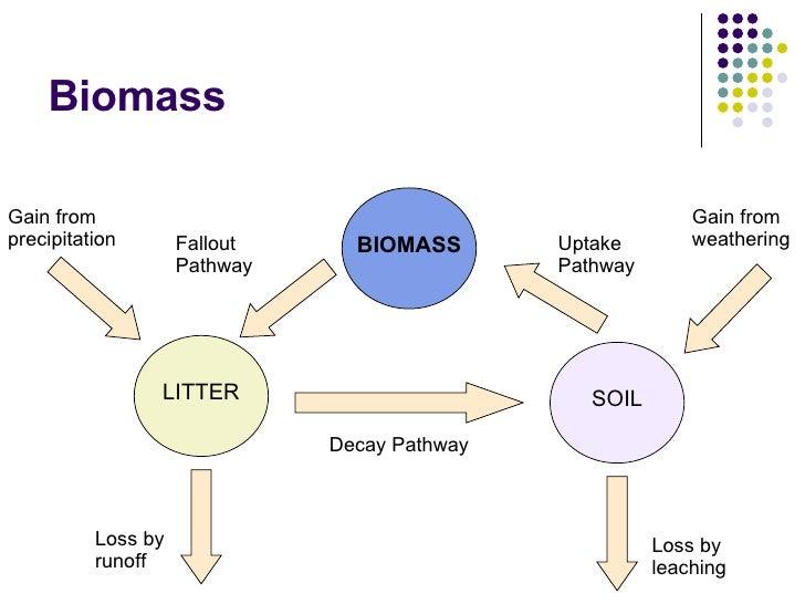 gersmehl diagrams ib questions ecosystems 3 nutrient cycle