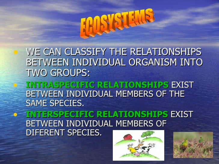 • WE CAN CLASSIFY THE RELATIONSHIPS    BETWEEN INDIVIDUAL ORGANISM INTO    TWO GROUPS:• INTRASPECIFIC RELATIONSHIPS EXIST ...