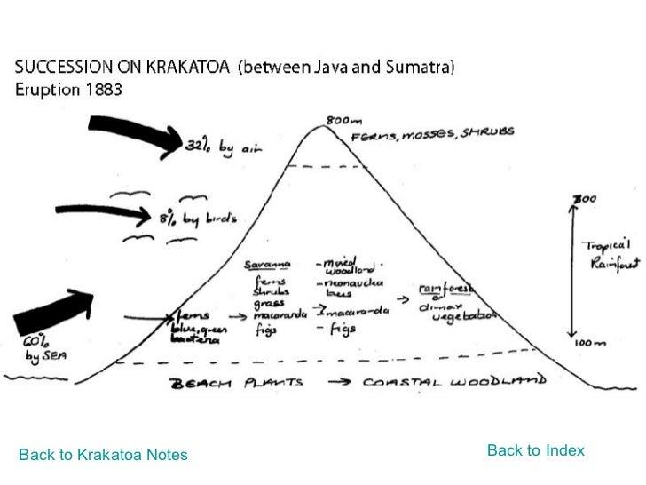 Back to Krakatoa Notes Back to Index