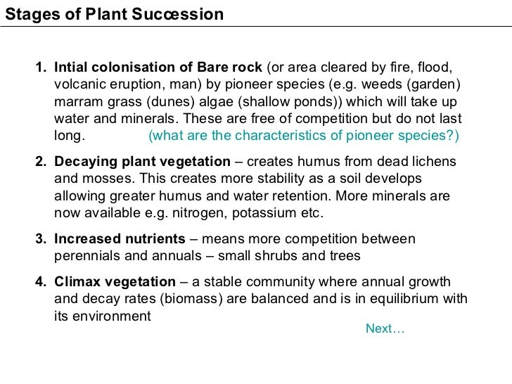 <ul><li>Intial colonisation of Bare rock  (or area cleared by fire, flood, volcanic eruption, man) by pioneer species (e.g...