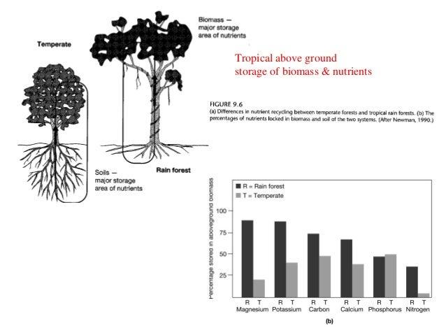 Ecosystems and biodiversity