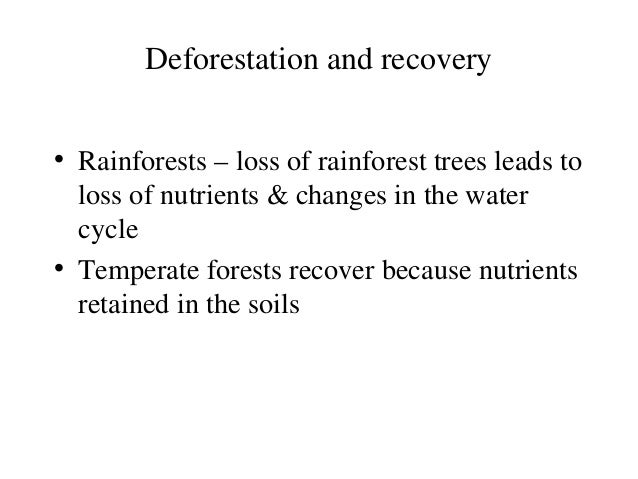 Loss of Biodiversity Essay