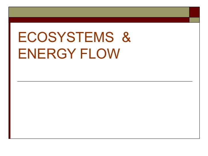 ECOSYSTEMS  & ENERGY FLOW