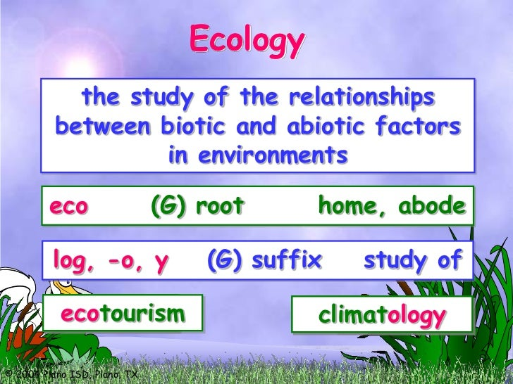 relationship biotic and abiotic factors