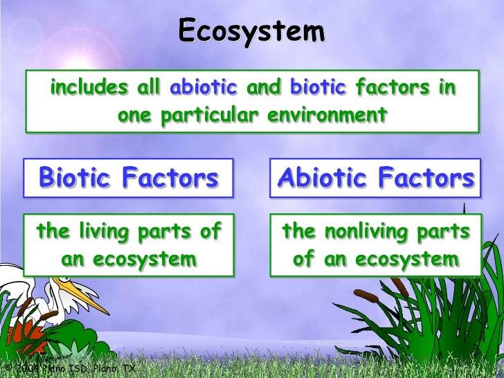 describe the relationship between biotic and abiotic factors