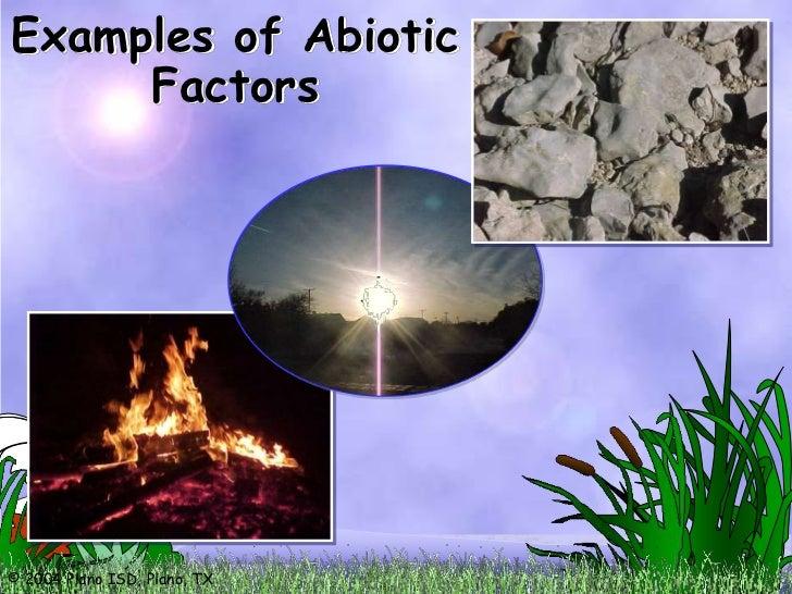 Ecosystems, biotic and abiotic factors