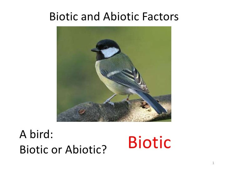 Biotic and Abiotic FactorsA bird:Biotic or Abiotic?   Biotic                                   1