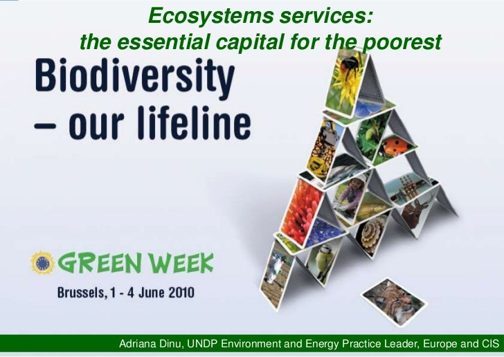 Ecosystems services: the essential capital for the poorest  (UNDP presentation)