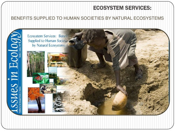 ECOSYSTEM SERVICES:<br />BENEFITS SUPPLIED TO HUMAN SOCIETIES BY NATURAL ECOSYSTEMS<br />