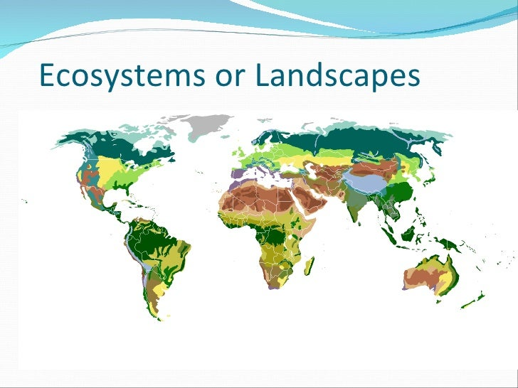 Ecosystems or Landscapes
