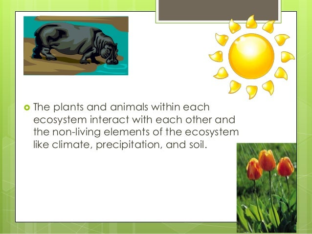  The plants and animals within each ecosystem interact with each other and the non-living elements of the ecosystem like ...