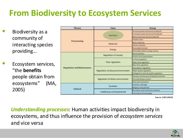 agricultural sustainability and biodiversity essay Listed are various terms synonymous with sustainability use different terms when searching databases, and catalogs from virginia tech's sustainability research guide.
