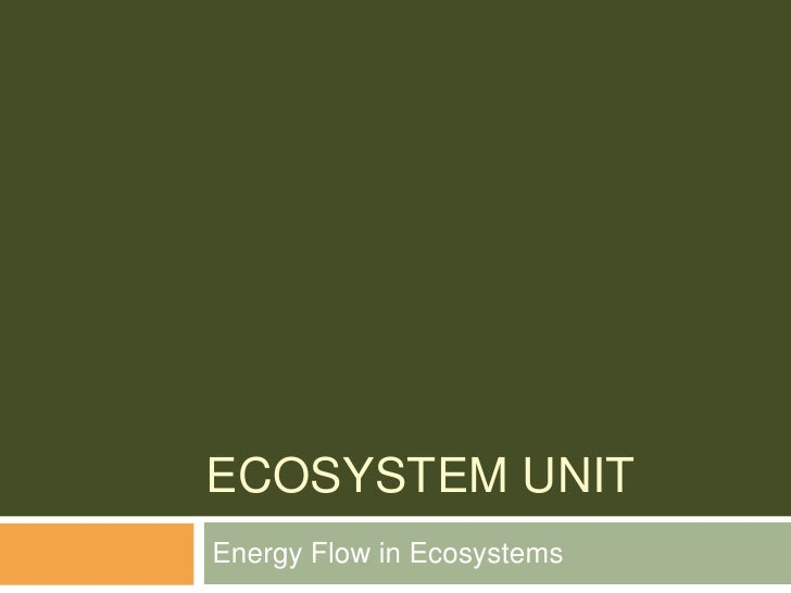 Ecosystem Unit<br />Energy Flow in Ecosystems<br />
