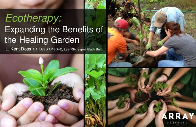 Ecotherapy: Expanding the Benefits of the Healing Garden L. Kent Doss AIA, LEED AP BD+C, Lean/Six Sigma Black Belt