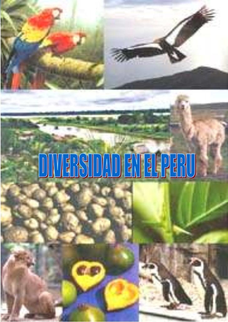 """-1061085-899795<br />-457200050292000Universidad Nacional <br />""""Pedro Ruiz Gallo""""<br />ADMINISTRACION TURISTICA Y HOTELER..."""