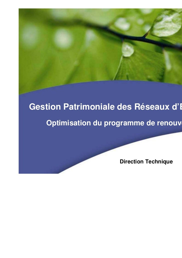 Gestion Patrimoniale des Réseaux d'Eau Potable   Optimisation du programme de renouvellement                      Directio...