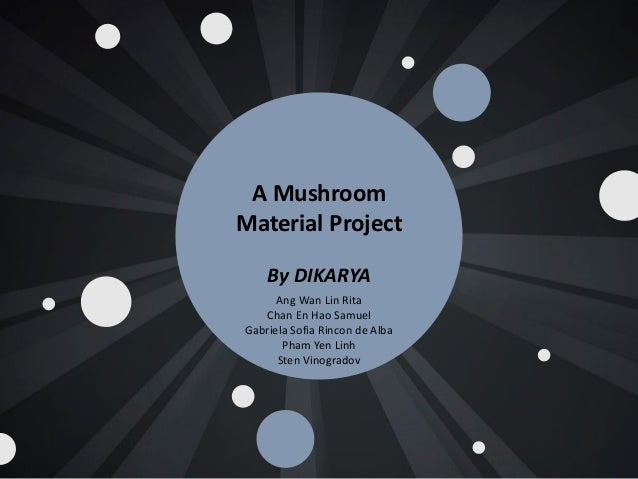 Eco-Friendly Mushroom materials