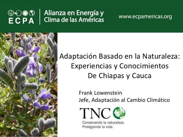 Adaptación Basado en la Naturaleza:   Experiencias y Conocimientos        De Chiapas y Cauca     Frank Lowenstein     Jefe...
