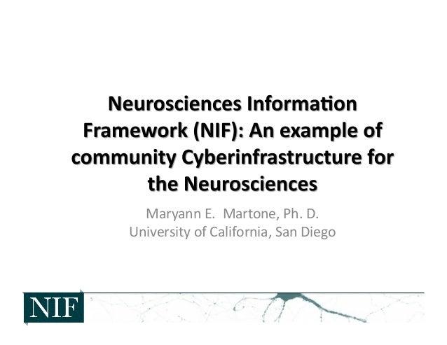 EcsiNeurosciences Information Framework (NIF): An example