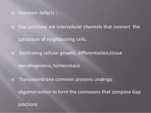  In the Golgi network six connexin subunits assemble to form a connexon  The connexon is then transported to the plasma ...
