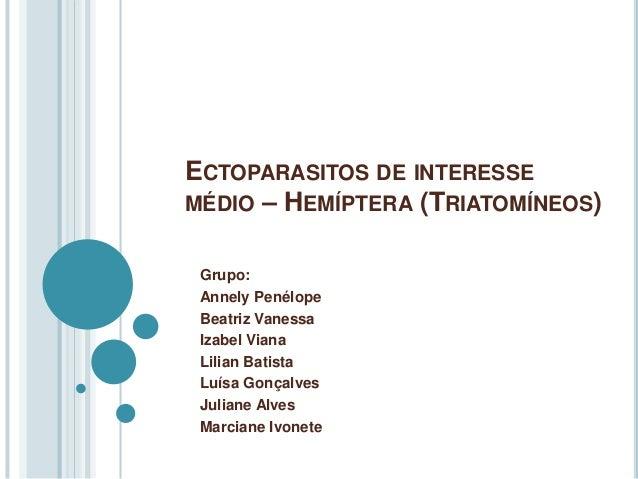 ECTOPARASITOS DE INTERESSE  MÉDIO – HEMÍPTERA (TRIATOMÍNEOS)  Grupo:  Annely Penélope  Beatriz Vanessa  Izabel Viana  Lili...