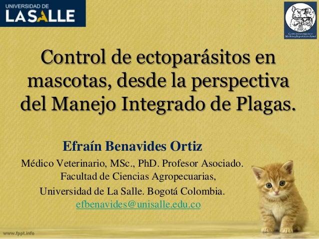 Control de ectoparásitos en  mascotas, desde la perspectiva  del Manejo Integrado de Plagas.  Efraín Benavides Ortiz  Médi...